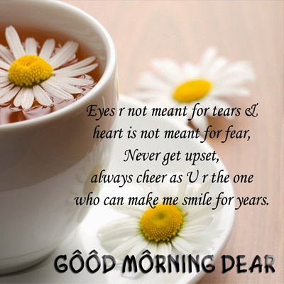 Beautiful Morning Quotes Beautiful Morning Quotes  Good Morning Images Quotes Wishes .
