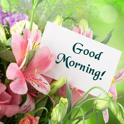 Flowers Romantic Morning from Good morning Love Quotes Images