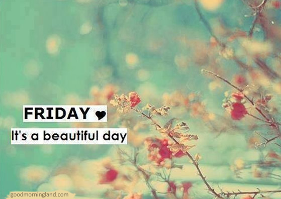friday its a beautiful day good morning images quotes