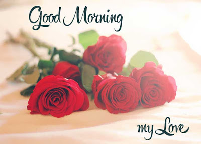 Good Morning My Love Quotes Good Morning Images Quotes Wishes