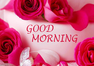 Good Morning Red Roses & Flowers Wishes eCard