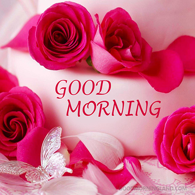 Good Morning Red Roses & Flowers Wishes eCard - Good