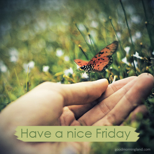 Have A Nice Friday 2017 Good Morning Images, Quotes, Wishes, Messages, greetings & eCards