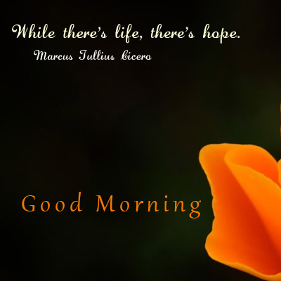 Hope Good Morning Quotes Good Morning Images Wishes and Quotes