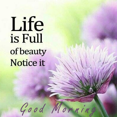 life is full of beauty good morning inspirational quotes