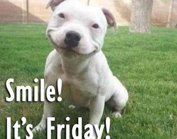 Smile It Is Friday Best Funny Good Friday Pics Good Morning Images, Quotes, Wishes, Messages, greetings & eCards