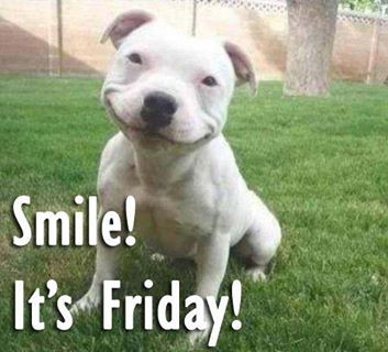 Smile it is friday best funny good friday pics good morning images download m4hsunfo