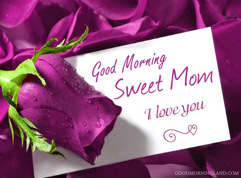 Good Morning Mom I Love You - Good Morning Images, Quotes, Wishes