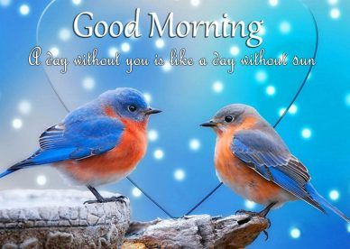 Cool Good Morning Love Status Images - Good Morning Images, Quotes, Wishes, Messages, greetings & eCards