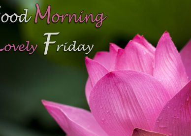 Good Morning Lovely Friday - Good Morning Images, Quotes, Wishes, Messages, greetings & eCards