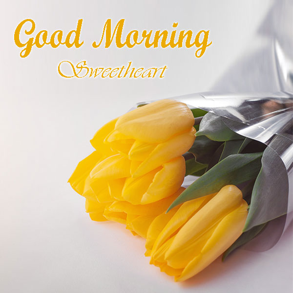 Good Morning Sweetheart Rose Images For Facebook - Good Morning Images, Quotes, Wishes, Messages, greetings & eCards