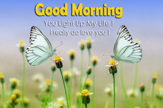 good morning you light up my life good morning images quotes wishes