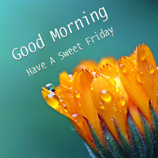 Have A Sweet Friday Good Morning Images - Good Morning ...