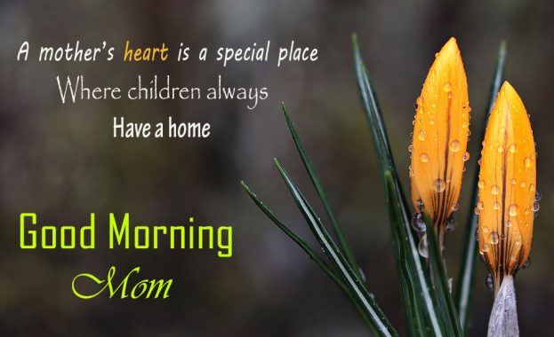 Sweet Good Morning Wishes For Mom - Good Morning Images, Quotes, Wishes, Messages, greetings & eCard