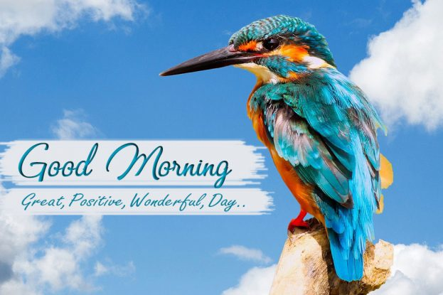 New Good Morning Quotes - Good Morning Images, Quotes, Wishes, Messages, greetings & eCard
