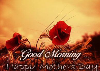 Good Morning Happy Mothers Day - Download Good Morning Wishes With Birds Images - Good Morning Images, Quotes, Wishes, Messages, greetings & eCard