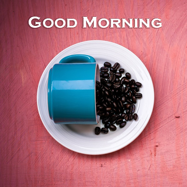 Good Morning Coffee Mug - Good Morning Images, Quotes, Wishes, Messages, greetings & eCard