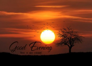 Good Evening Have A Nice Evening - Good Morning Images, Quotes, Wishes, Messages, greetings & eCard Images