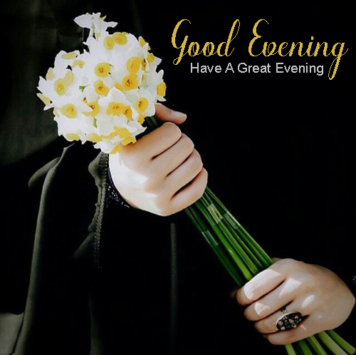 Good Evening Images Flowers - Good Morning Images, Quotes, Wishes, Messages, greetings & eCard Images