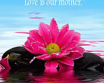 Morning Love Quotes - Good Morning Images, Quotes, Wishes, Messages, greetings & eCard