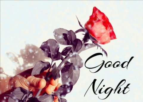 Best Good Night Instagram Images - Good Morning Images, Quotes, Wishes, Messages, greetings & eCard Images
