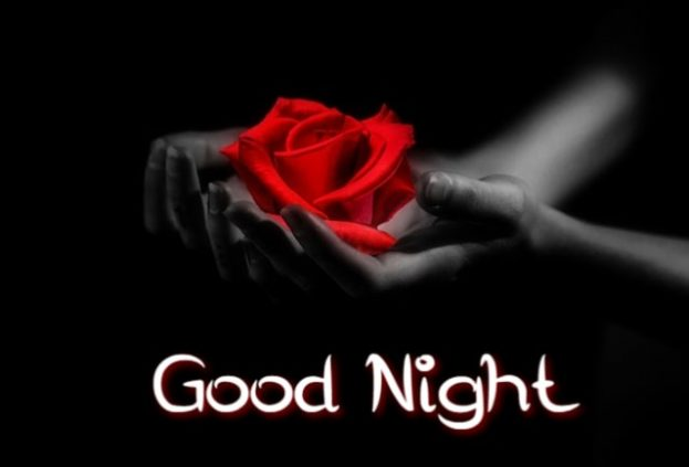 Good Night Images Flowers - Good Morning Images, Quotes, Wishes, Messages, greetings & eCard Images