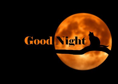 New Good Night HD Photos - Good Morning Images, Quotes, Wishes, Messages, greetings & eCard Images