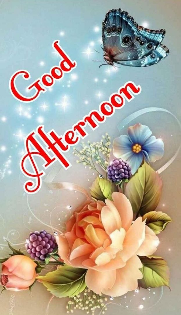 Good Afternoon Flowers & Butterfly Images - Good Morning Images, Quotes, Wishes, Messages, greetings & eCard Images