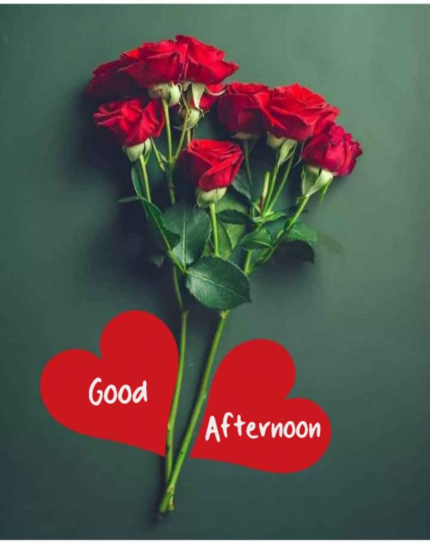 Good Afternoon Images With Love Flowers - Good Morning Images, Quotes, Wishes, Messages, greetings & eCard Images