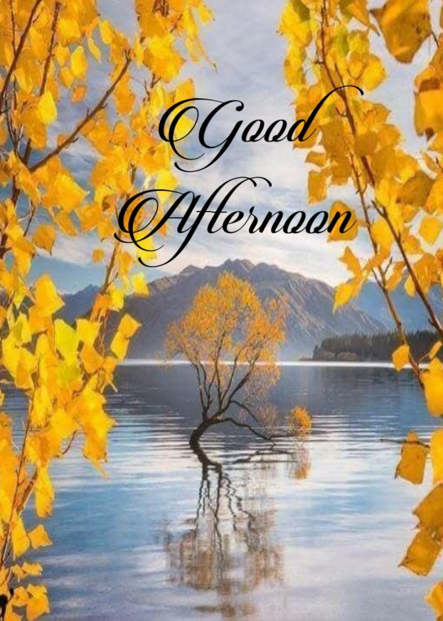 Good Afternoon Photos, Pictures - Good Morning Images, Quotes, Wishes, Messages, greetings & eCard Images