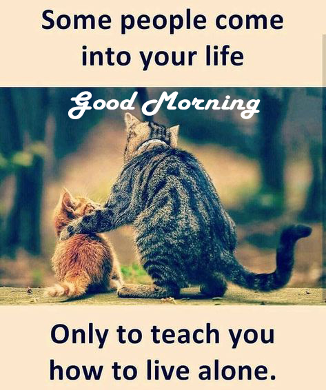 Love Quotes For Morning - Good Morning Images, Quotes, Wishes, Messages, greetings & eCard Images