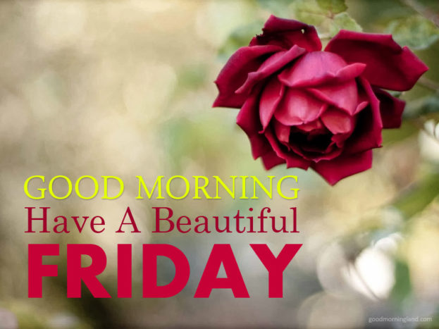 Best Good Morning Friday Have A Beautiful 2017 Good Morning Images, Quotes, Wishes, Messages, greetings & eCards