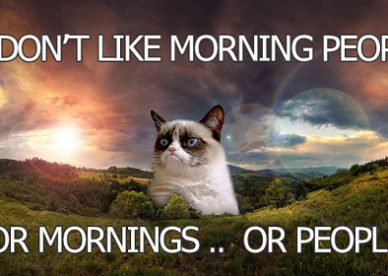Funny Good Morning Grumpy Cat Pictures With Captions - Good Morning Images Wishes and Quotes