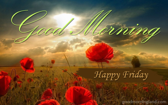 Happy Friday Design - Good Morning Images, Quotes, Wishes