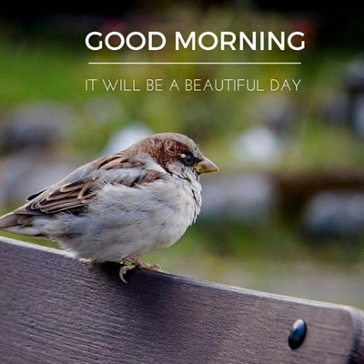 It Will Be A Beautiful Day Morning Wishes Images