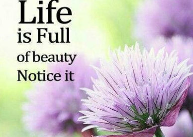 Life Is Full Of Beauty Good Morning Inspirational Quotes from Good morning inspirational Quotes Images