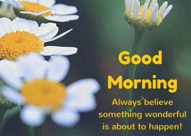 Lovely Good Morning Quotes Good Morning Images Wishes and Quotes