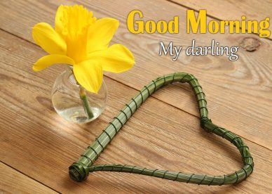 Best Good Morning Darling Pictures - Good Morning Images, Quotes, Wishes, Messages, greetings & eCard