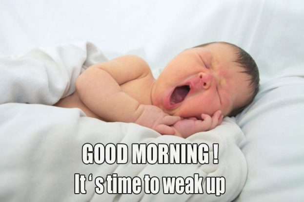 Cute Funny Baby Good Morning Images - Good Morning Images, Quotes, Wishes, Messages, greetings & eCards