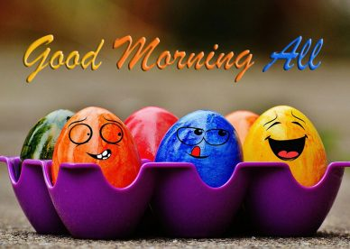 Funny Good Morning All - Good Morning Images, Quotes, Wishes, Messages, greetings & eCards