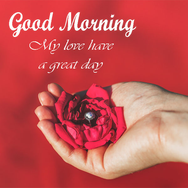 Good Morning My Love Wishes With Flower Pics - Good Morning Images, Quotes, Wishes, Messages, greetings & eCards