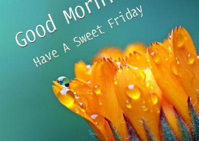Have A Sweet Friday Good Morning Images - Good Morning Images, Quotes, Wishes, Messages, greetings & eCards