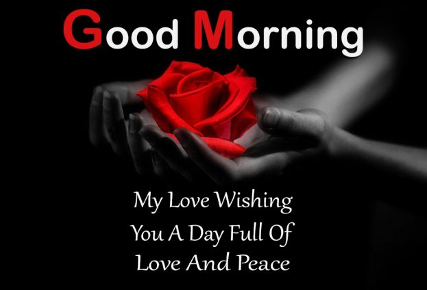 My Love Wishing You A Day Full Of Love and Peace Good Morning Images - Good Morning Images, Quotes, Wishes, Messages, greetings & eCards