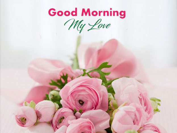 Wonderful Good Morning My Love Pic - Good Morning Images, Quotes, Wishes, Messages, greetings & eCard