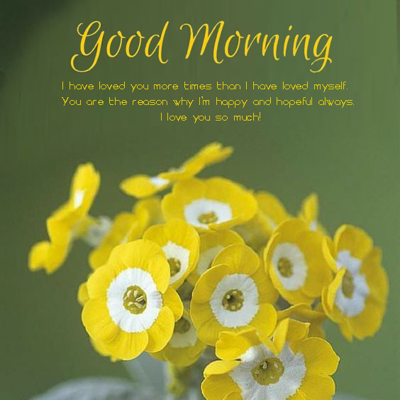 Good Morning Messages For Him - Good Morning Images, Quotes, Wishes, Messages, greetings & eCard Images - Good Morning Images, Quotes, Wishes, Messages, greetings & eCard Images