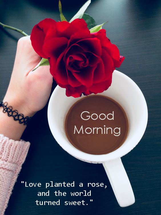 Good Morning Messages Lover - Good Morning Images, Quotes, Wishes, Messages, greetings & eCard Images
