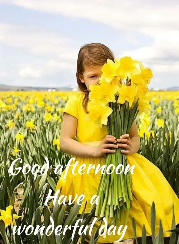 Good Afternoon Have A wonderful Day - Good Morning Images, Quotes, Wishes, Messages, greetings & eCard Images