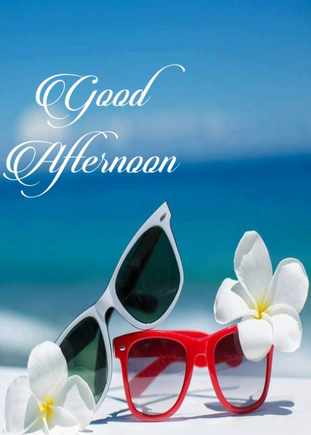 Good Afternoon Images 2020 -  Good Morning Images, Quotes, Wishes, Messages, greetings & eCard Images