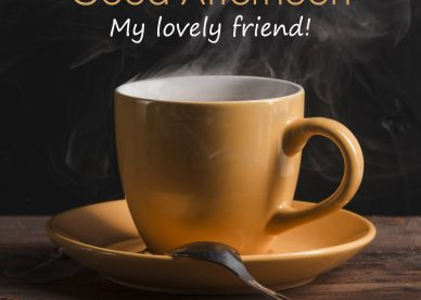 Good Afternoon My Lovely Friend - Good Morning Images, Quotes, Wishes, Messages, greetings & eCard Images
