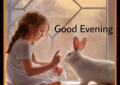 Nice Evening Images - Good Morning Images, Quotes, Wishes, Messages, greetings & eCard Images